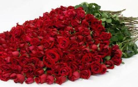 Display of 200 Long Stem Red Roses by The Flower Alley