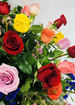 3 dozen long stem multi colored roses thumb