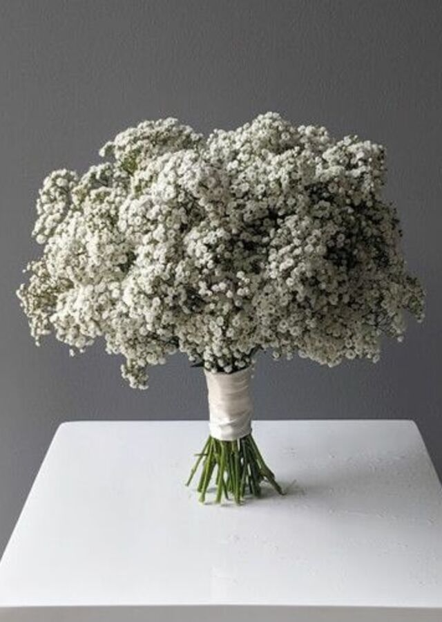Display of Baby's Breath Bouquet: Medium by The Flower Alley