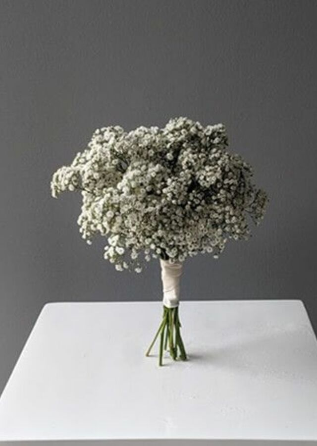 Display of Baby's Breath Bouquet: Small by The Flower Alley