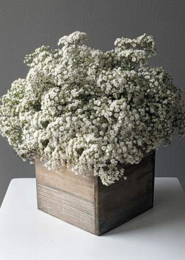 Baby's Breath: Large Centerpiece by The Flower Alley