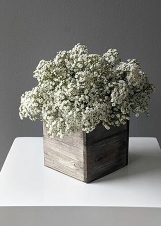 Display of Baby's Breath: Medium Centerpiece by The Flower Alley