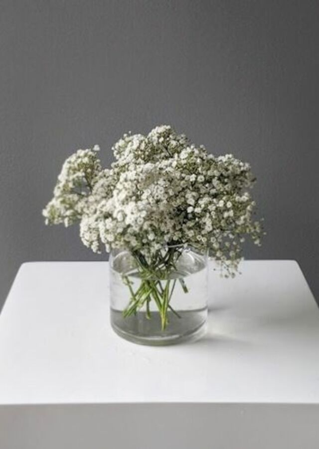 Display of Baby's Breath: Small Centerpiece by The Flower Alley