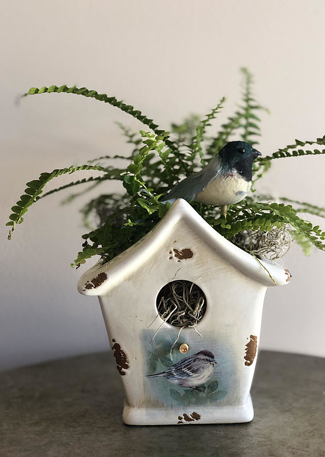 Display of Birdhouse Planter by The Flower Alley