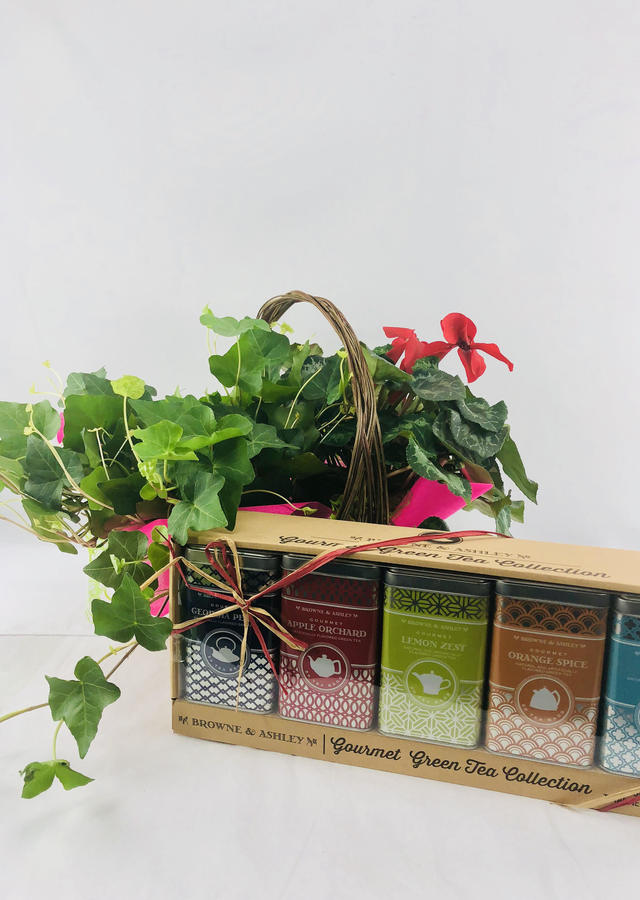 Blooming Ivy Basket & Tea Gift Set by The Flower Alley