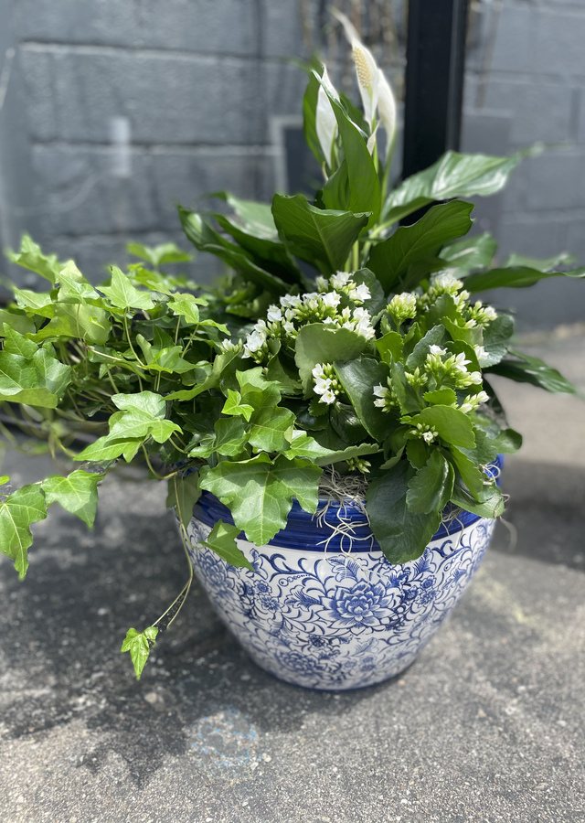 Display of Blue and white luxury planter by The Flower Alley