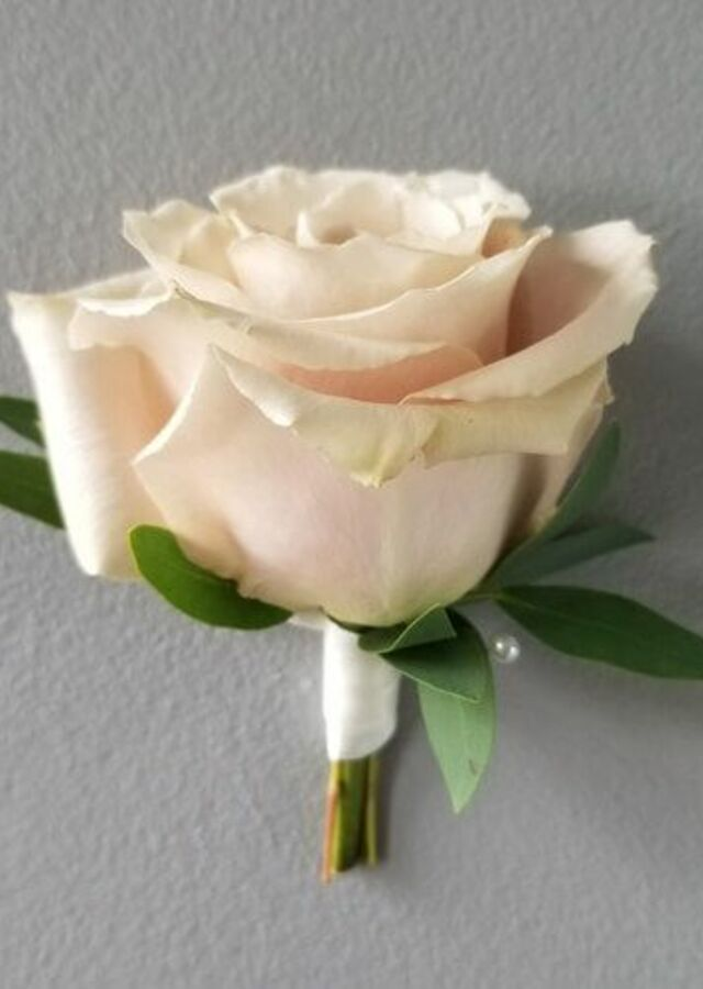 Display of Blush Collection: Blush Boutonniere by The Flower Alley