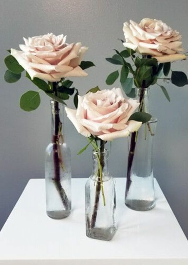 Display of Blush Collection: Trio of Budvases by The Flower Alley