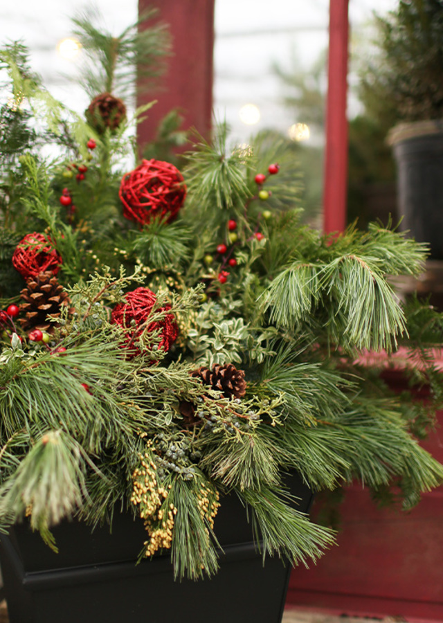 Classic Holiday Porch Pot by The Flower Alley