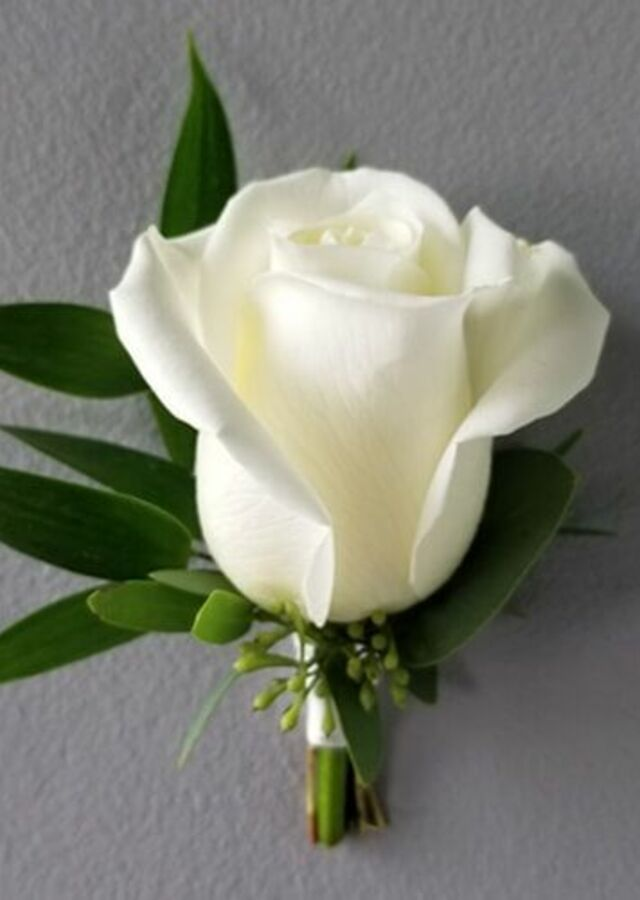 Display of Classic White Rose Boutonniere by The Flower Alley