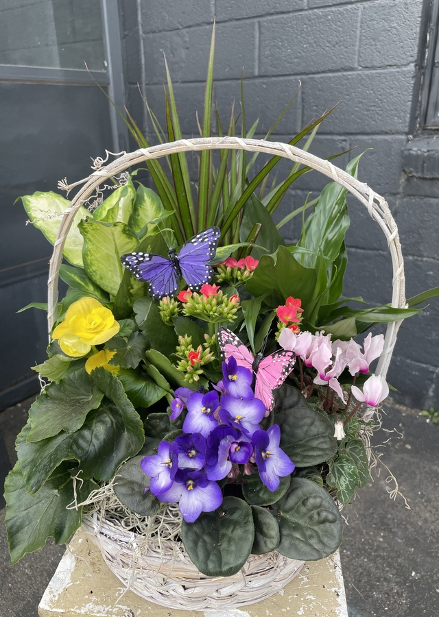 Deluxe Spring Blooming Basket by The Flower Alley