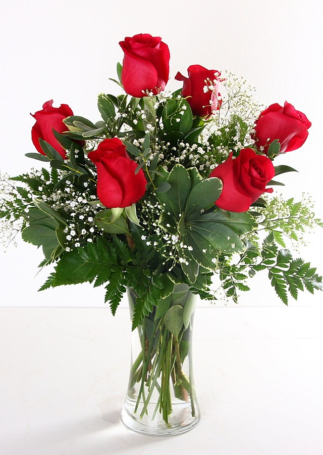 Half Dozen Red Roses by The Flower Alley