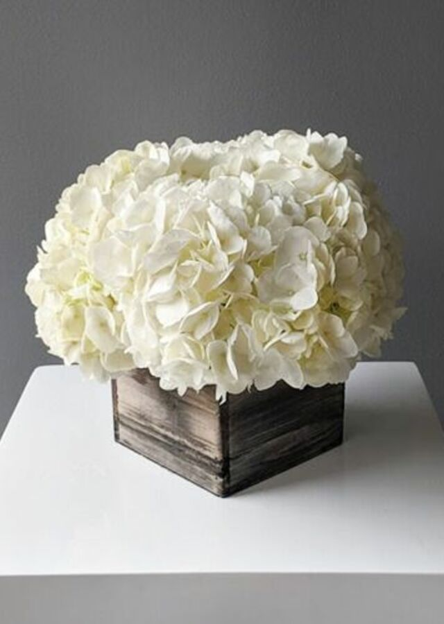 Display of Hydrangea: Medium Centerpiece by The Flower Alley