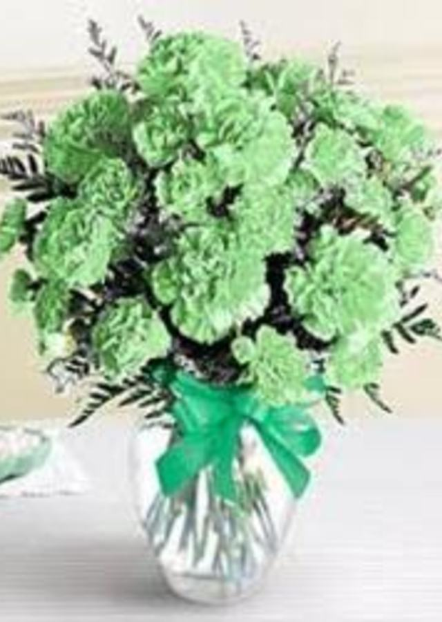Luck of The Irish 18 Green Carnations by The Flower Alley
