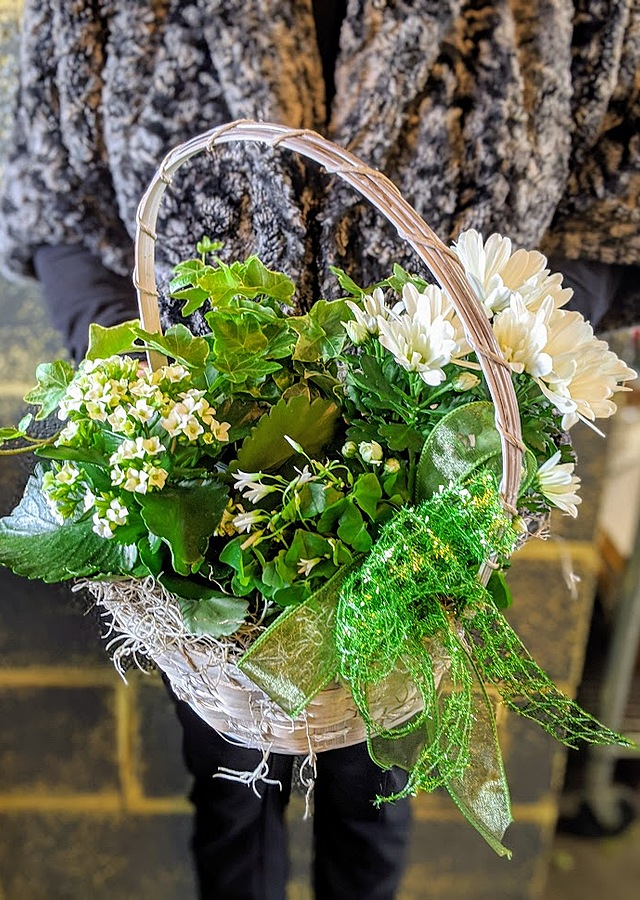 Display of Luck of The Irish Basket by The Flower Alley