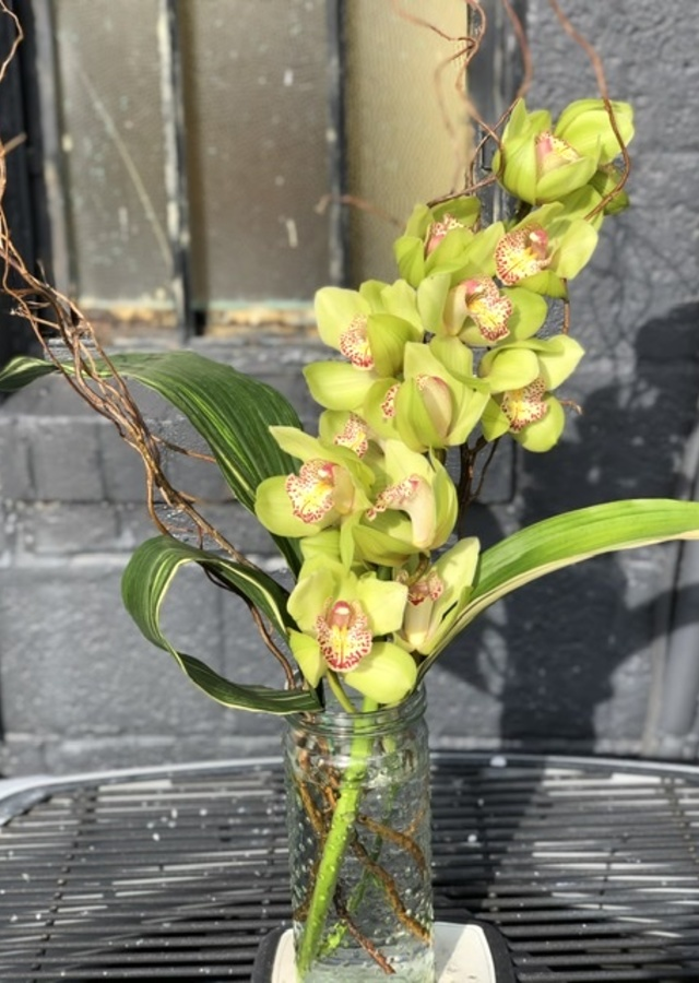Display of Modern Cymbidium by The Flower Alley