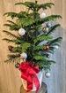 Oh christmas tree thumb