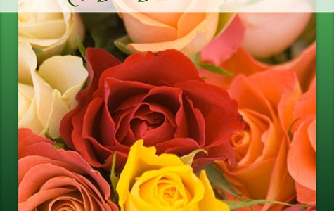 Display of Gift Subscription: One Dozen Premium Long Stem Roses Delivered Once A Month, For A Year by The Flower Alley