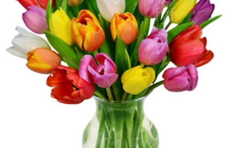 Display of Rainbow Tulip Bouquet by The Flower Alley