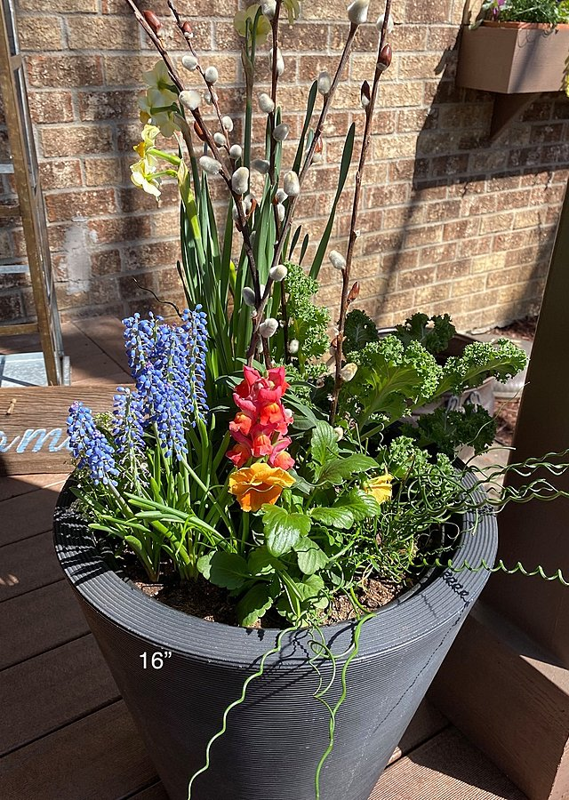 "Display of Seasonal Porch Pot Subscription (16"") by The Flower Alley"