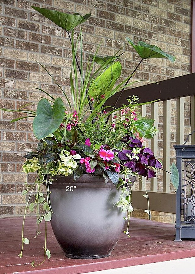 "Display of Seasonal Porch Pots Subscription (2) 20"" by The Flower Alley"