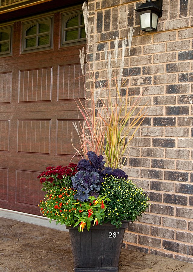 "Display of Seasonal Porch Pots Subscription (2) 26"" by The Flower Alley"