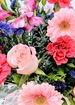 Closeup photo thumb secret admirer bouquet