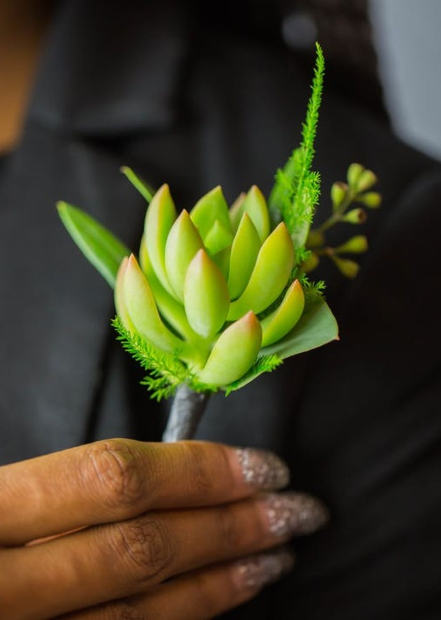 Display of Succulent Boutonniere by The Flower Alley