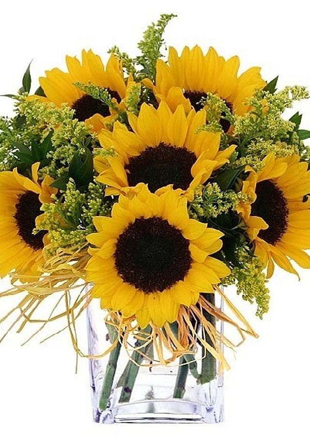 Display of Sunflower Simplicity by The Flower Alley
