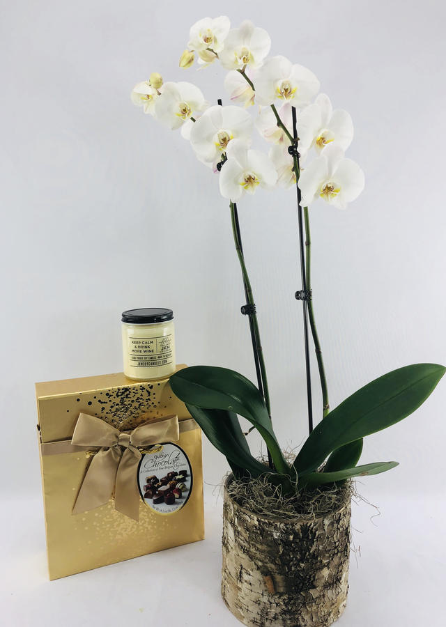 The Classy Lady: Gift Set by The Flower Alley
