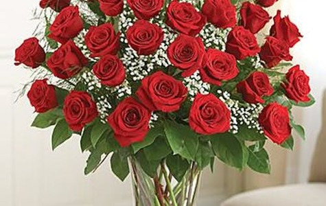Display of Three Dozen Premium Long-Stem Ecuadorian Red Roses by The Flower Alley
