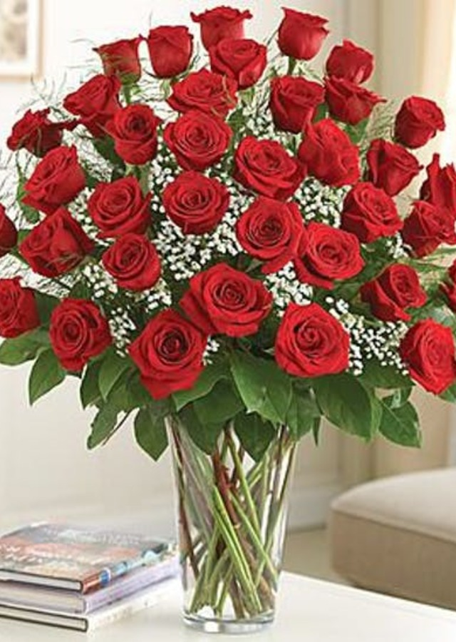 Display of 36  Premium Long-Stem Red Roses by The Flower Alley