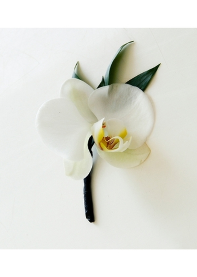 Display of White Orchid Boutonniere by The Flower Alley
