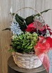 Winter delightful blooming garden basket thumb